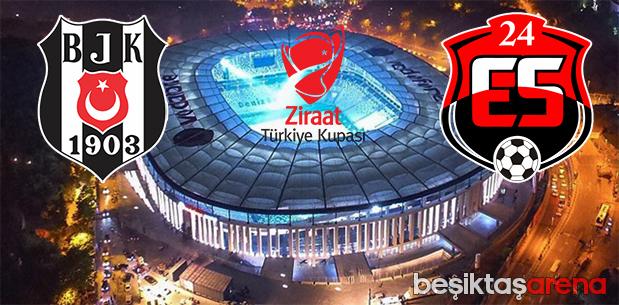 Beşiktaş-Erzincanspor