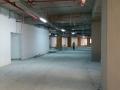 vodafone arena 11.00 07 eylul 2015 (36)