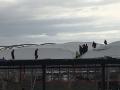 vodafone arena 13 Şubat 2016 (5)